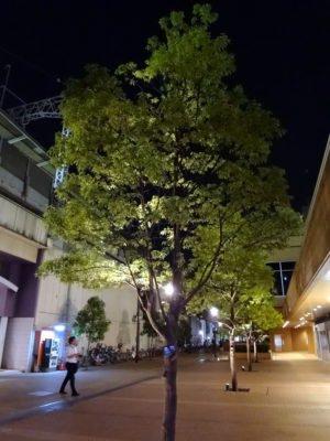 市川駅前の夜の風景